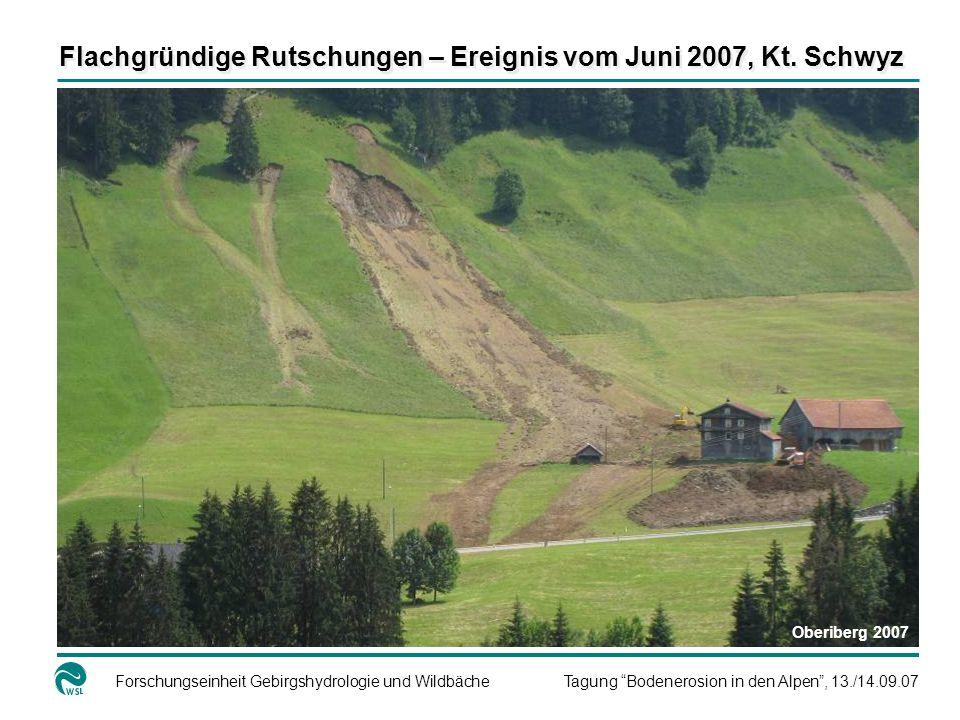 Flachgründige Rutschungen – Ereignis vom Juni 2007, Kt. Schwyz