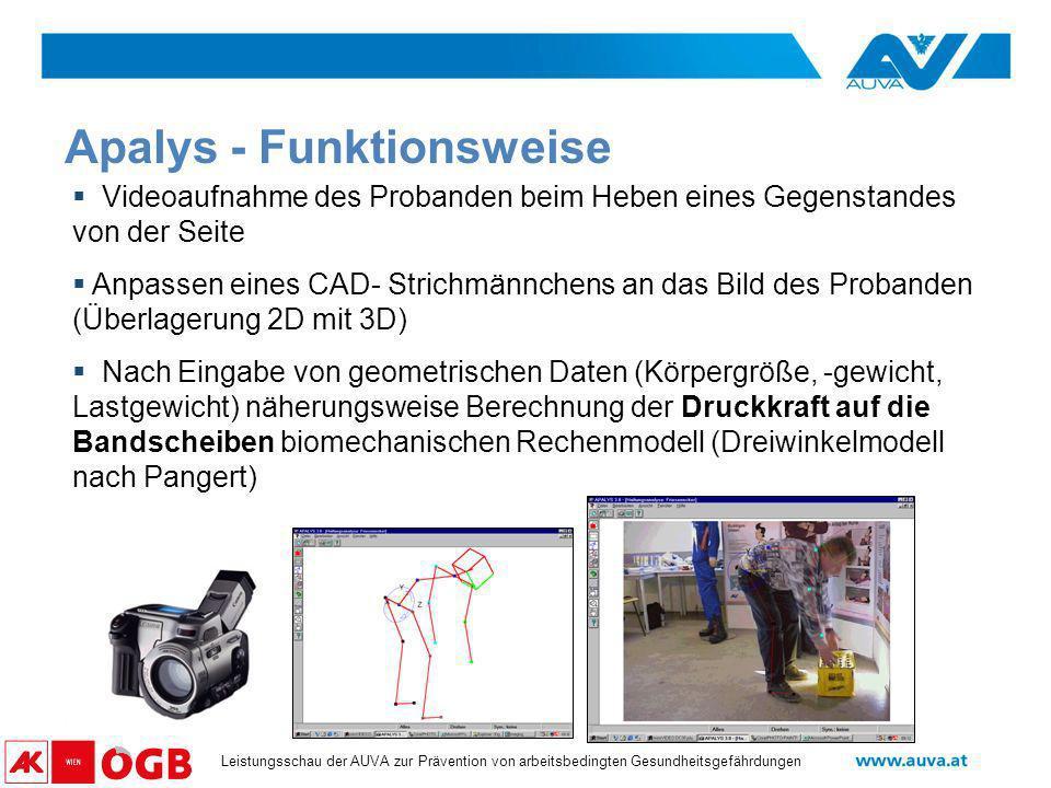 APALYS - ein biomechanisches Modell zur Analyse von Hebevorgängen