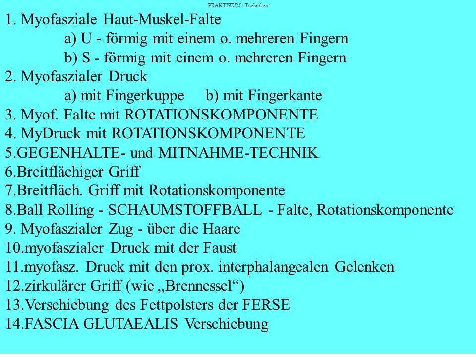 1. Myofasziale Haut-Muskel-Falte