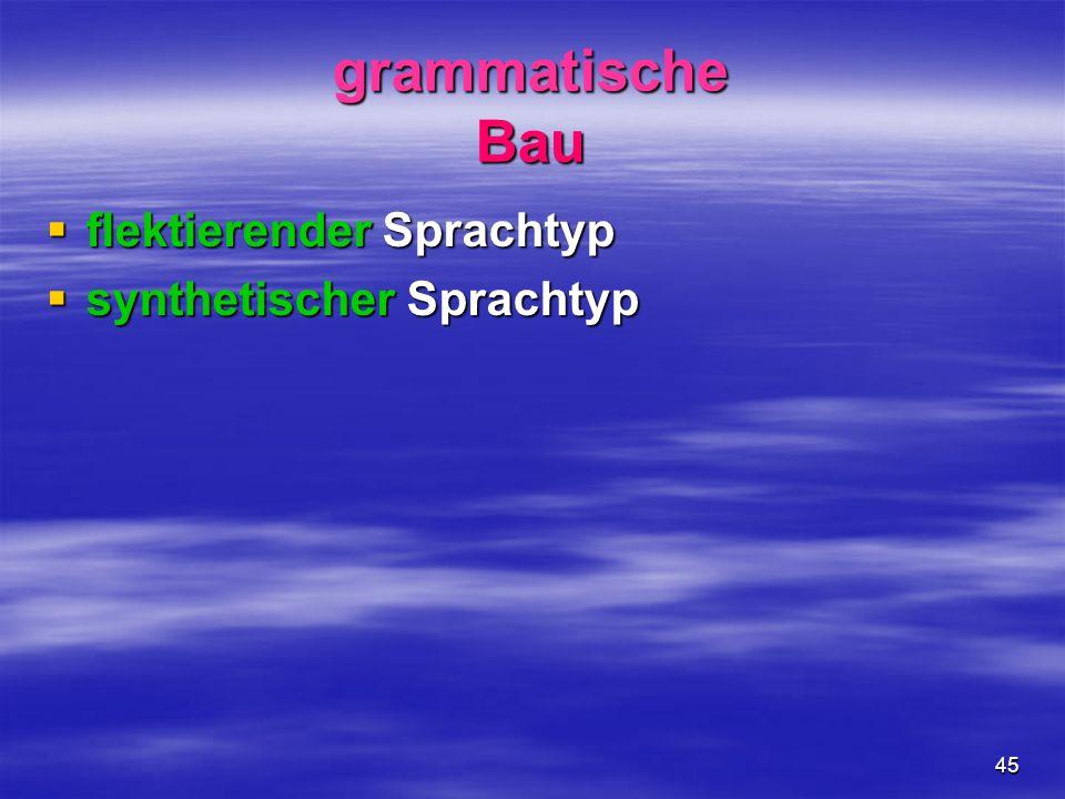 grammatische Bau flektierender Sprachtyp synthetischer Sprachtyp