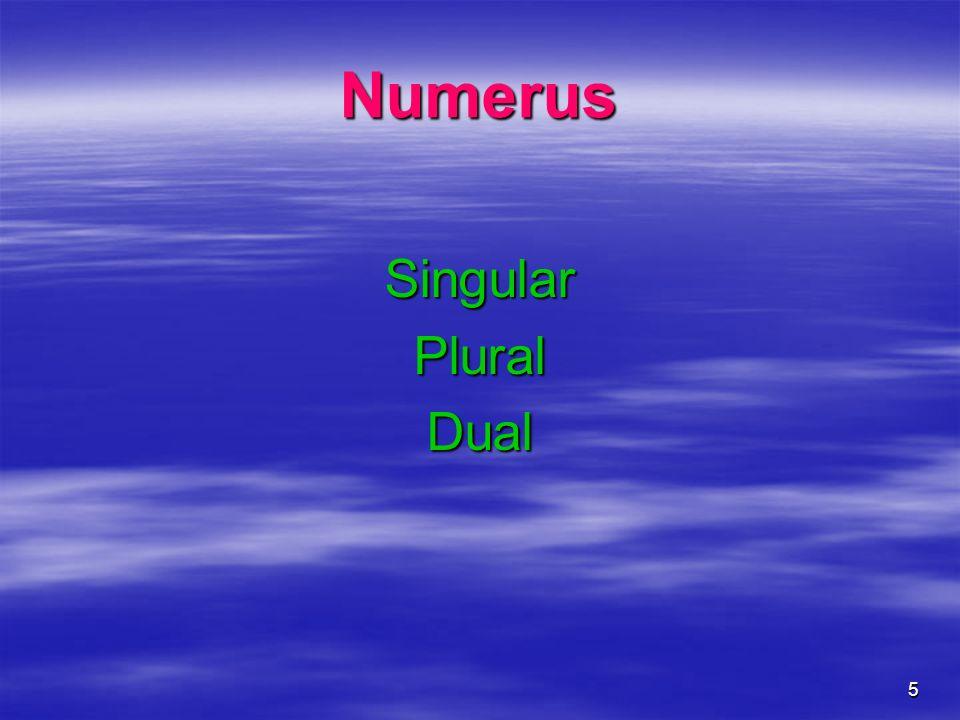 Numerus Singular Plural Dual