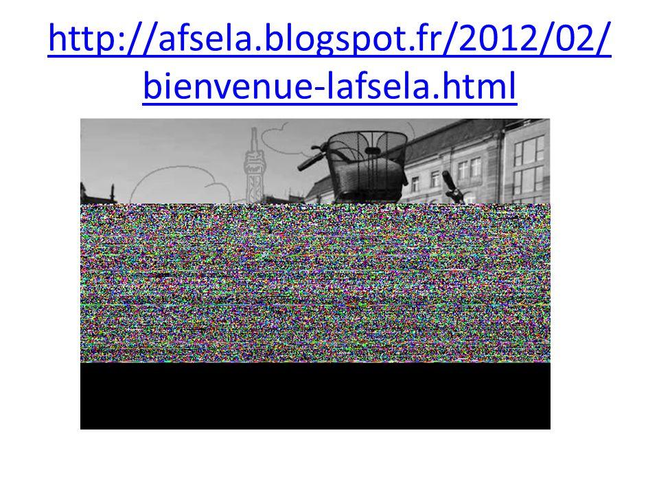 http://afsela.blogspot.fr/2012/02/bienvenue-lafsela.html