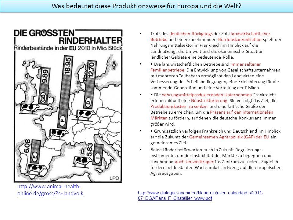 Was bedeutet diese Produktionsweise für Europa und die Welt