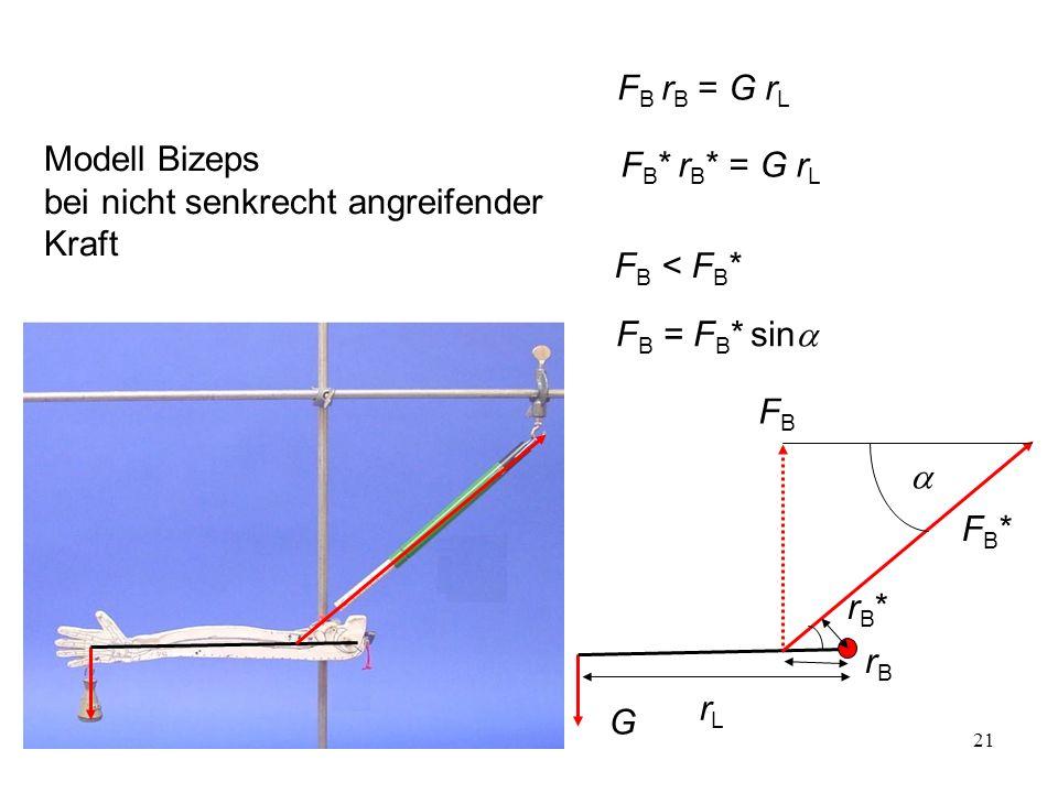 FB rB = G rL Modell Bizeps bei nicht senkrecht angreifender Kraft. FB* rB* = G rL. FB < FB* FB = FB* sina.