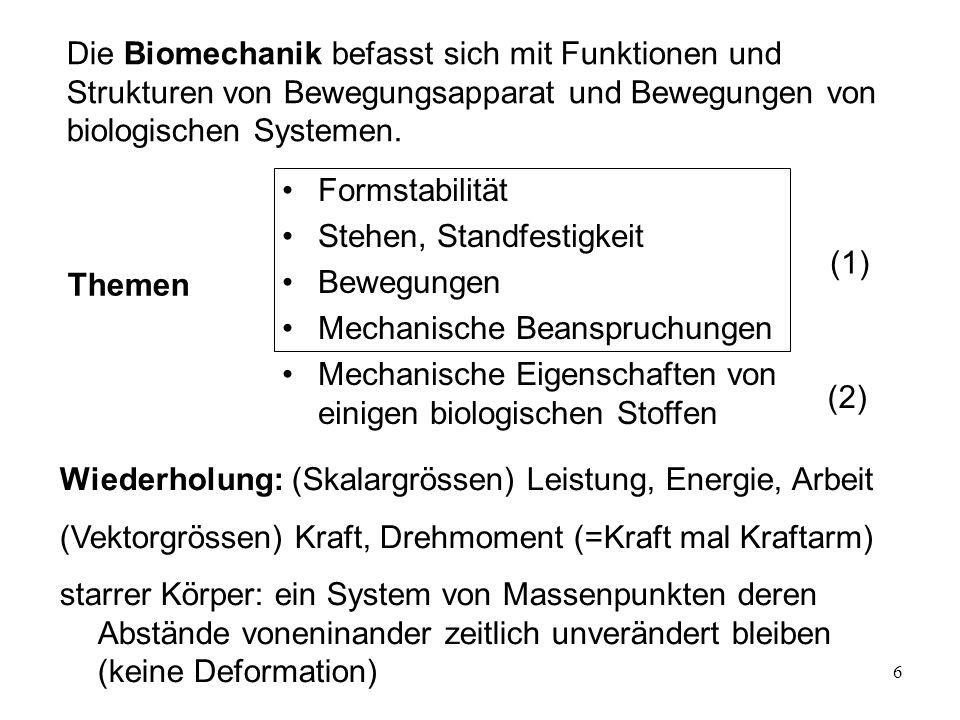 Die Biomechanik befasst sich mit Funktionen und Strukturen von Bewegungsapparat und Bewegungen von biologischen Systemen.