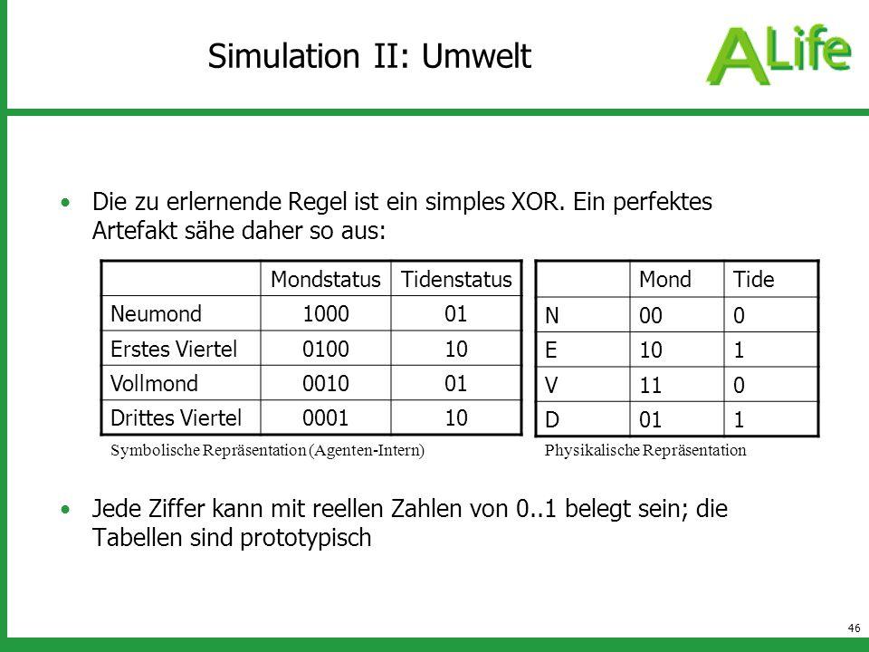 Simulation II: Umwelt Die zu erlernende Regel ist ein simples XOR. Ein perfektes Artefakt sähe daher so aus: