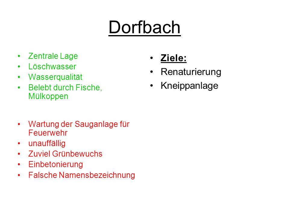 Dorfbach Ziele: Renaturierung Kneippanlage Zentrale Lage Löschwasser