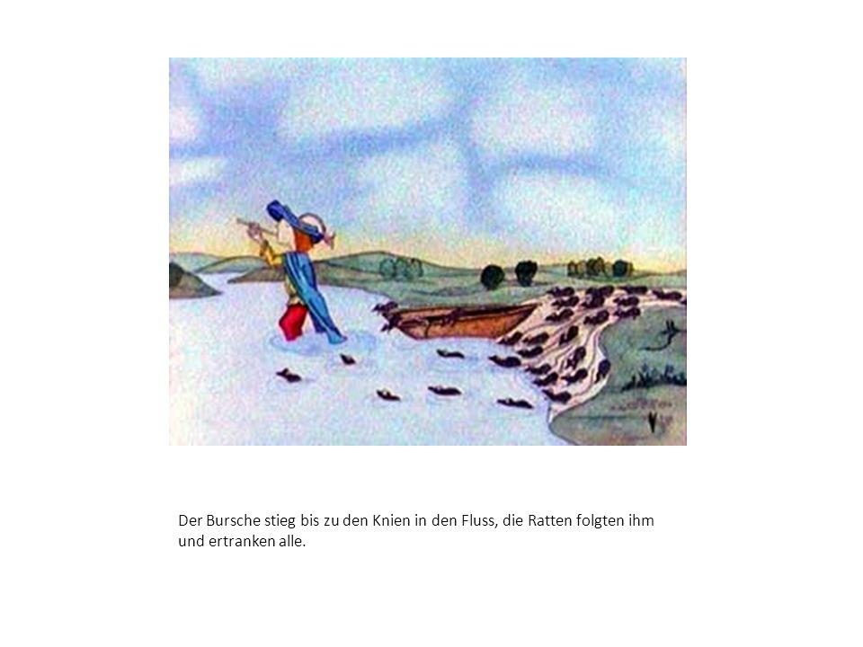 Der Bursche stieg bis zu den Knien in den Fluss, die Ratten folgten ihm und ertranken alle.