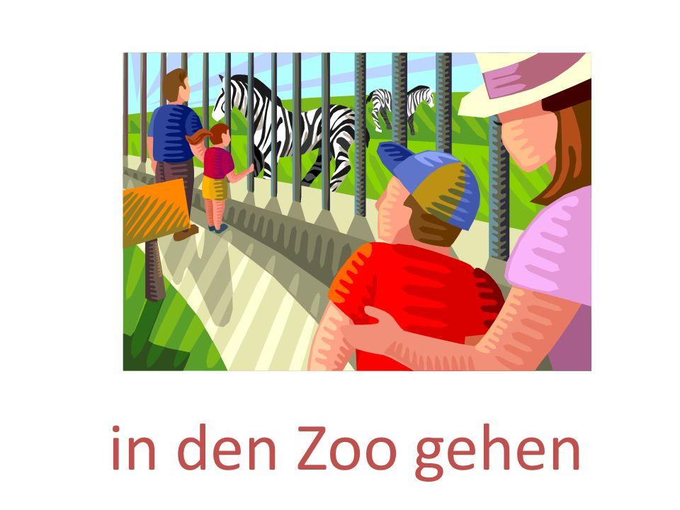 in den Zoo gehen