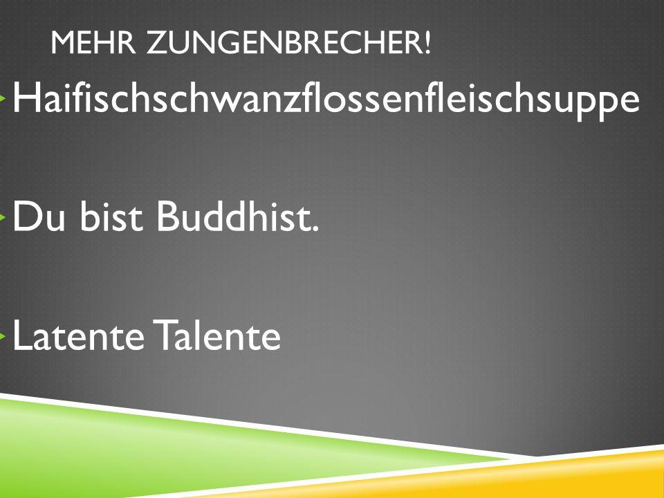Haifischschwanzflossenfleischsuppe Du bist Buddhist. Latente Talente