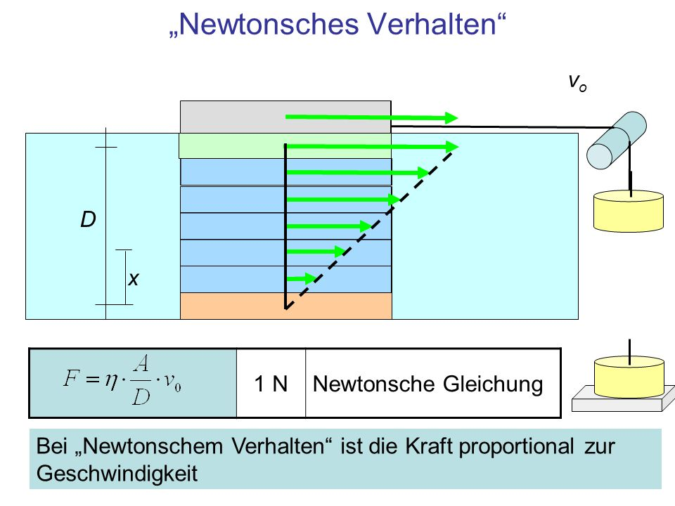 """""""Newtonsches Verhalten"""