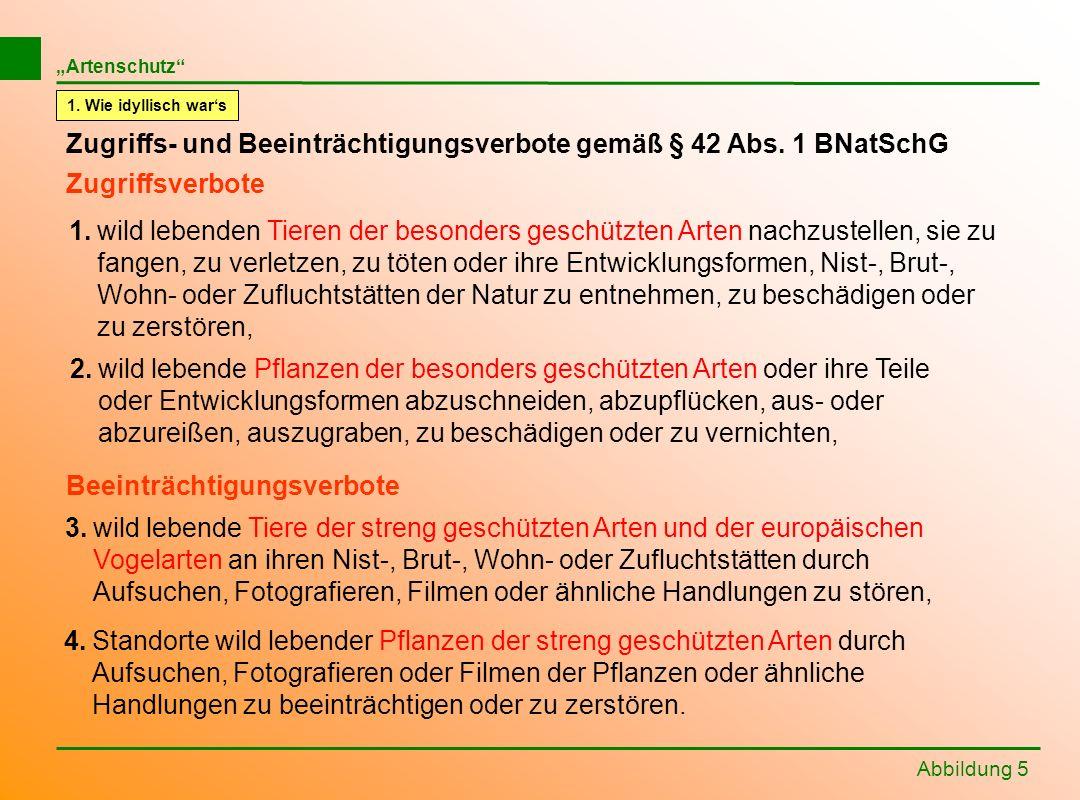 Zugriffs- und Beeinträchtigungsverbote gemäß § 42 Abs. 1 BNatSchG