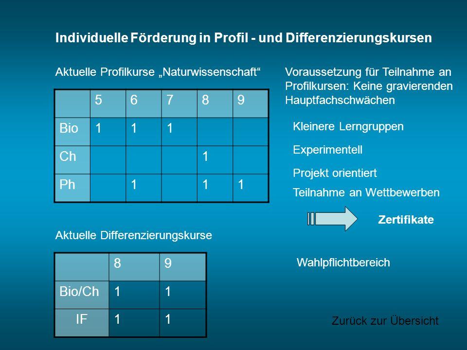Individuelle Förderung in Profil - und Differenzierungskursen 5 6 7 8