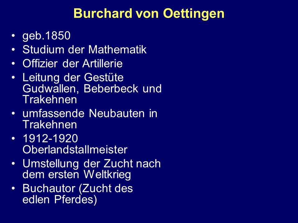 Burchard von Oettingen