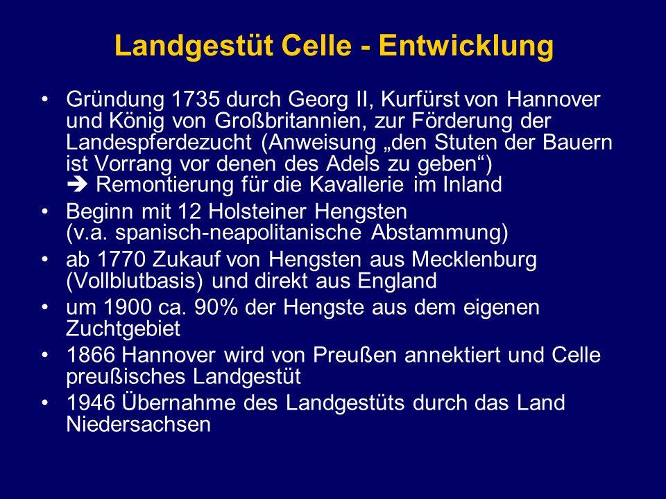 Landgestüt Celle - Entwicklung