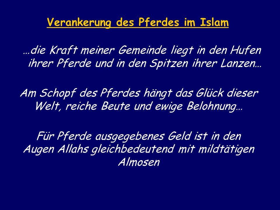 Verankerung des Pferdes im Islam