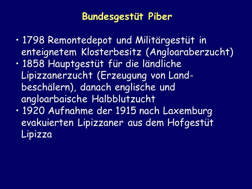 Bundesgestüt Piber 1798 Remontedepot und Militärgestüt in enteignetem Klosterbesitz (Angloaraberzucht)