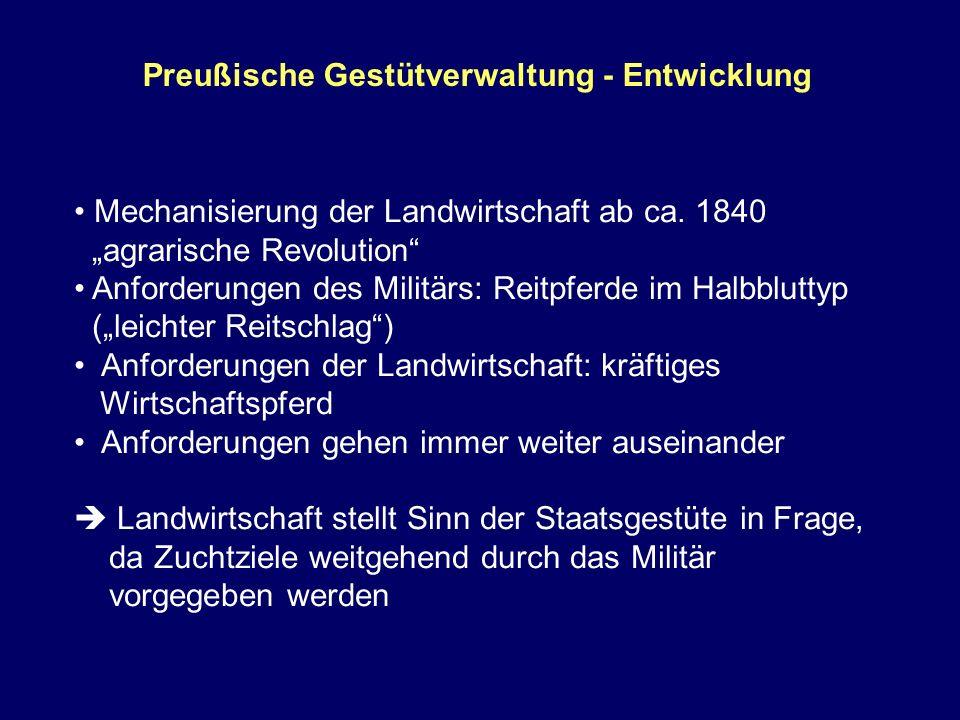 Preußische Gestütverwaltung - Entwicklung