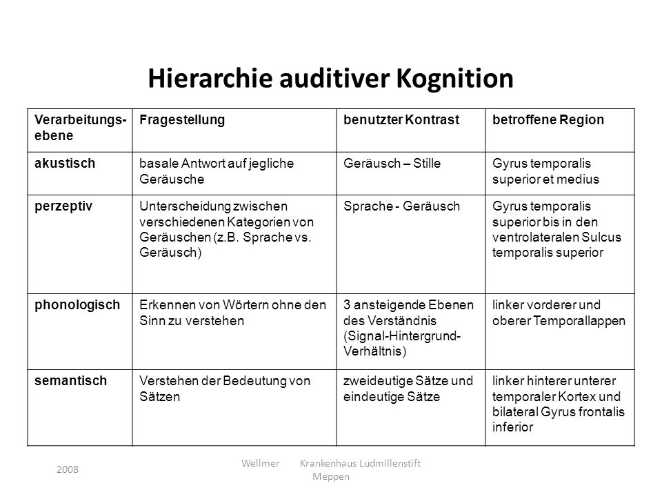Hierarchie auditiver Kognition