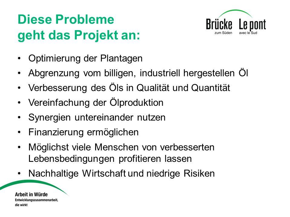 Diese Probleme geht das Projekt an: