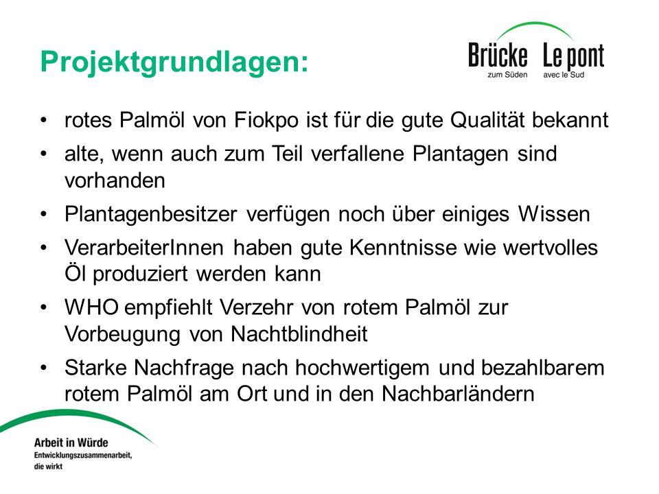 Projektgrundlagen: rotes Palmöl von Fiokpo ist für die gute Qualität bekannt. alte, wenn auch zum Teil verfallene Plantagen sind vorhanden.