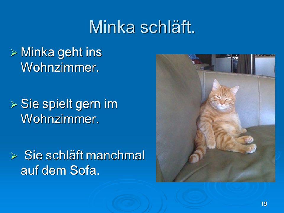 Minka schläft. Minka geht ins Wohnzimmer.