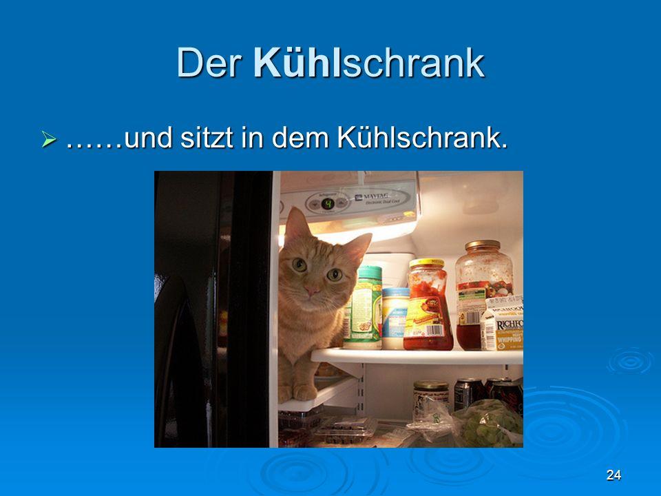 Der Kühlschrank ……und sitzt in dem Kühlschrank.