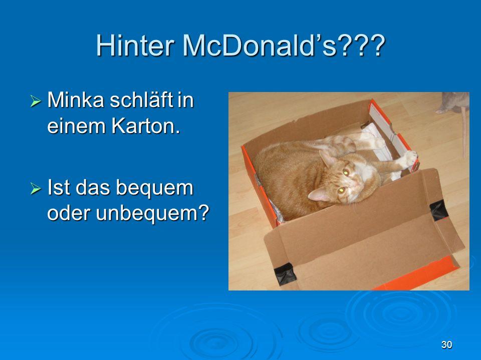 Hinter McDonald's Minka schläft in einem Karton.