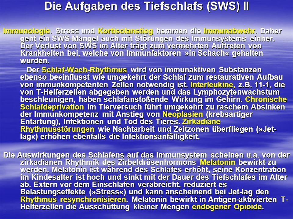 Die Aufgaben des Tiefschlafs (SWS) II