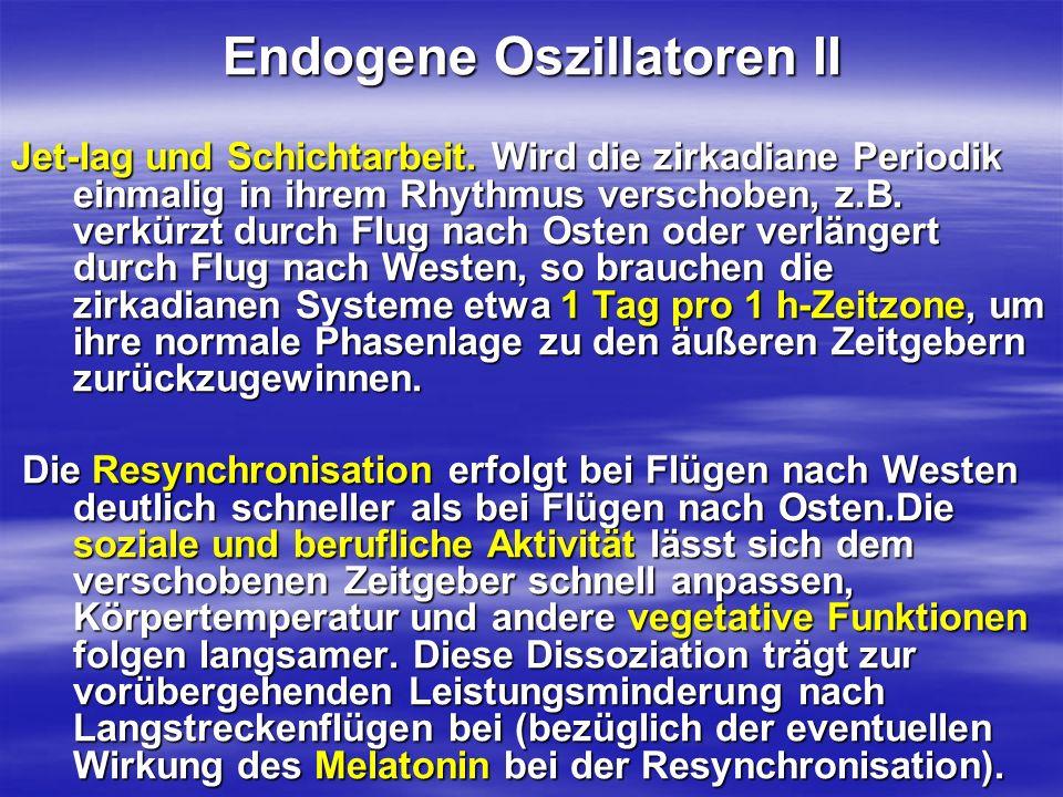 Endogene Oszillatoren II
