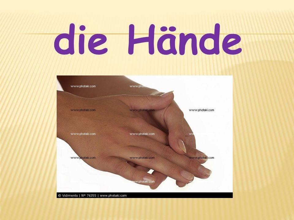 die Hände