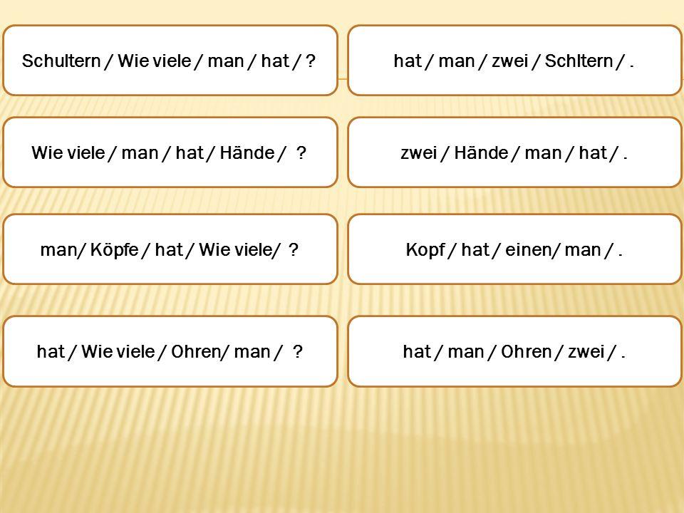 Schultern / Wie viele / man / hat / hat / man / zwei / Schltern / .