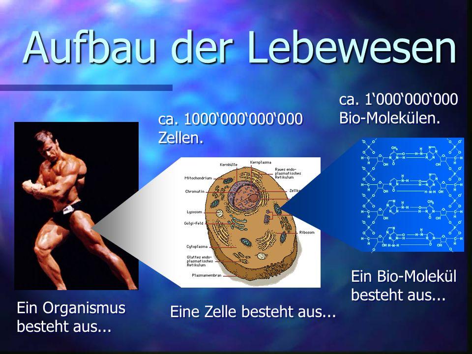 Aufbau der Lebewesen ca. 1'000'000'000 Bio-Molekülen.