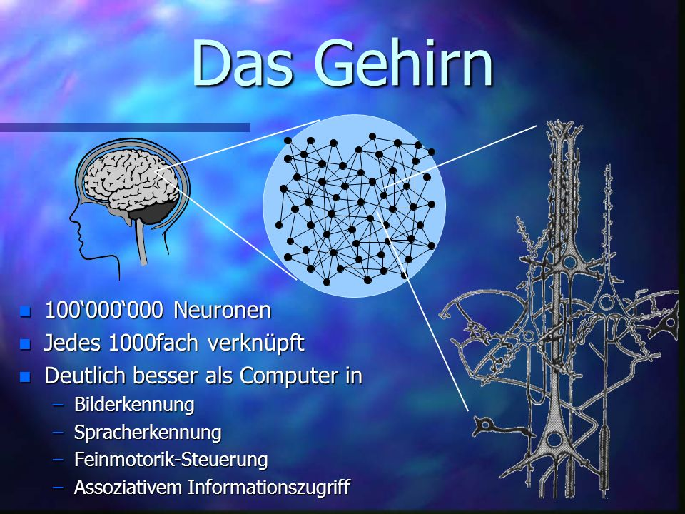 Das Gehirn 100'000'000 Neuronen Jedes 1000fach verknüpft
