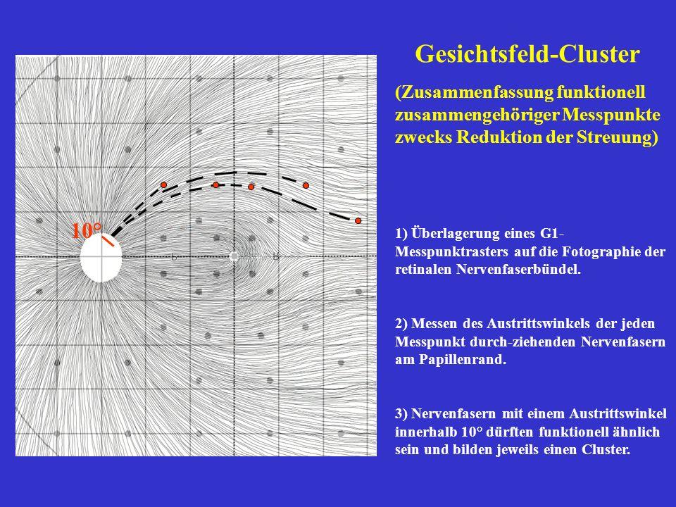 Gesichtsfeld-Cluster