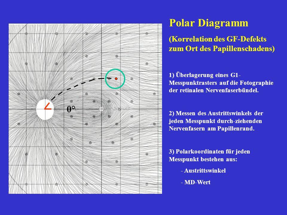 Polar Diagramm (Korrelation des GF-Defekts zum Ort des Papillenschadens)