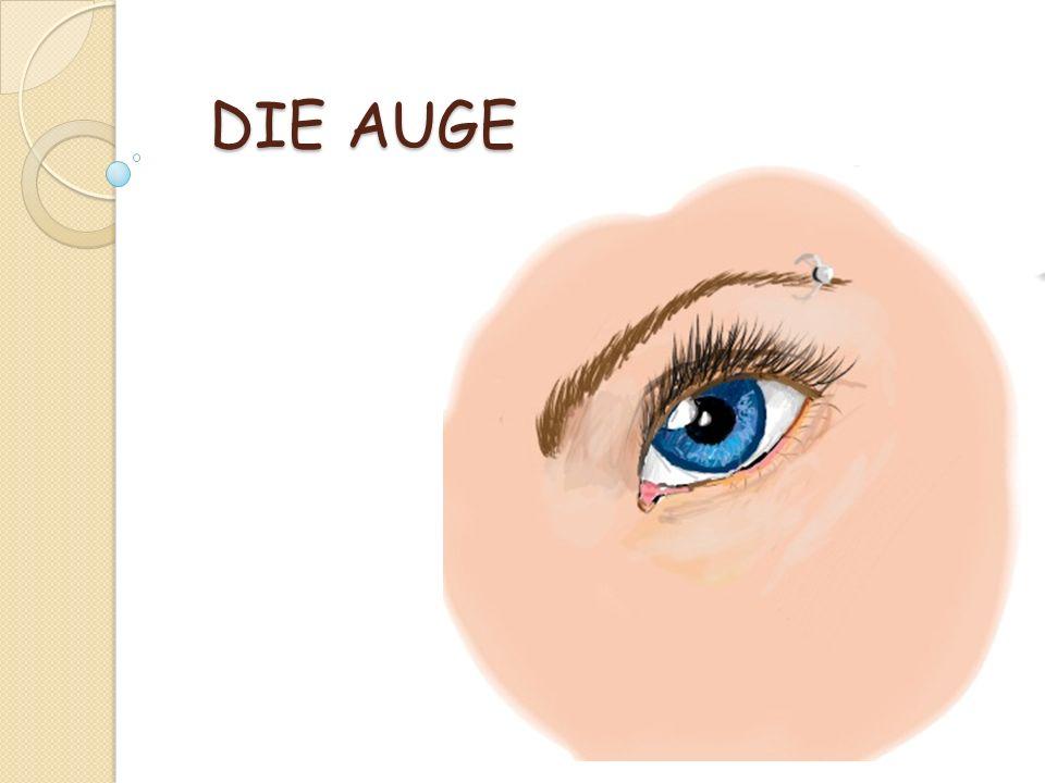 DIE AUGE