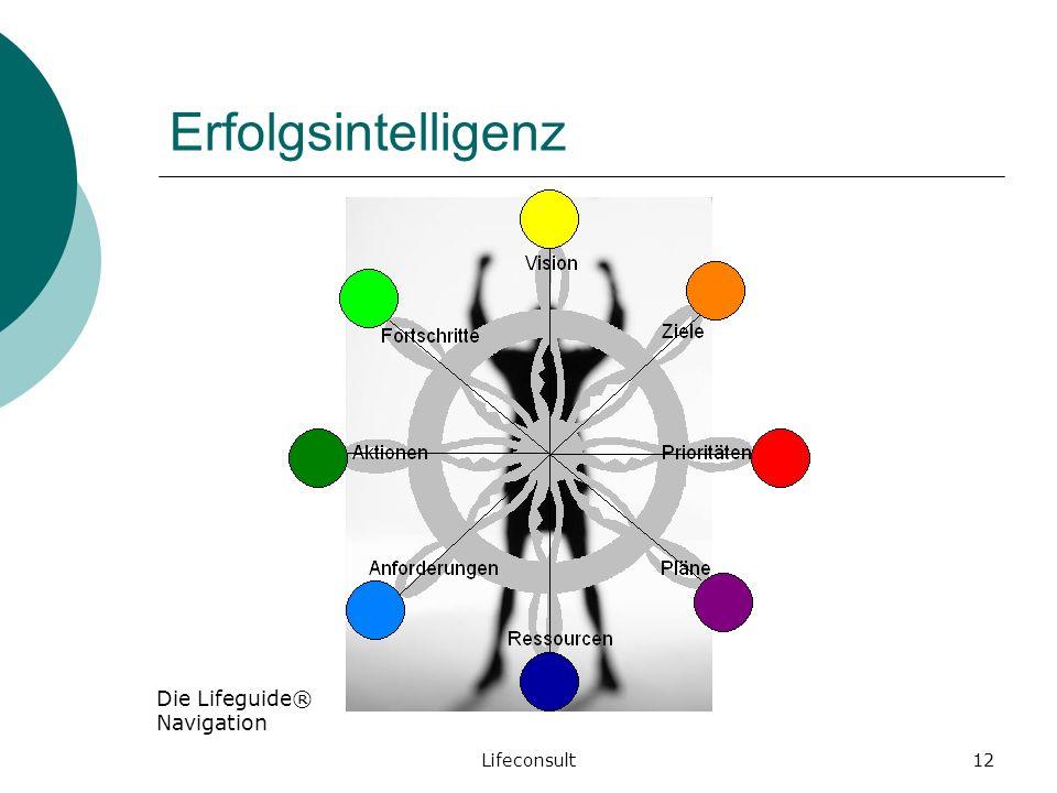 Erfolgsintelligenz Die Lifeguide® Navigation IFJ-Apéro