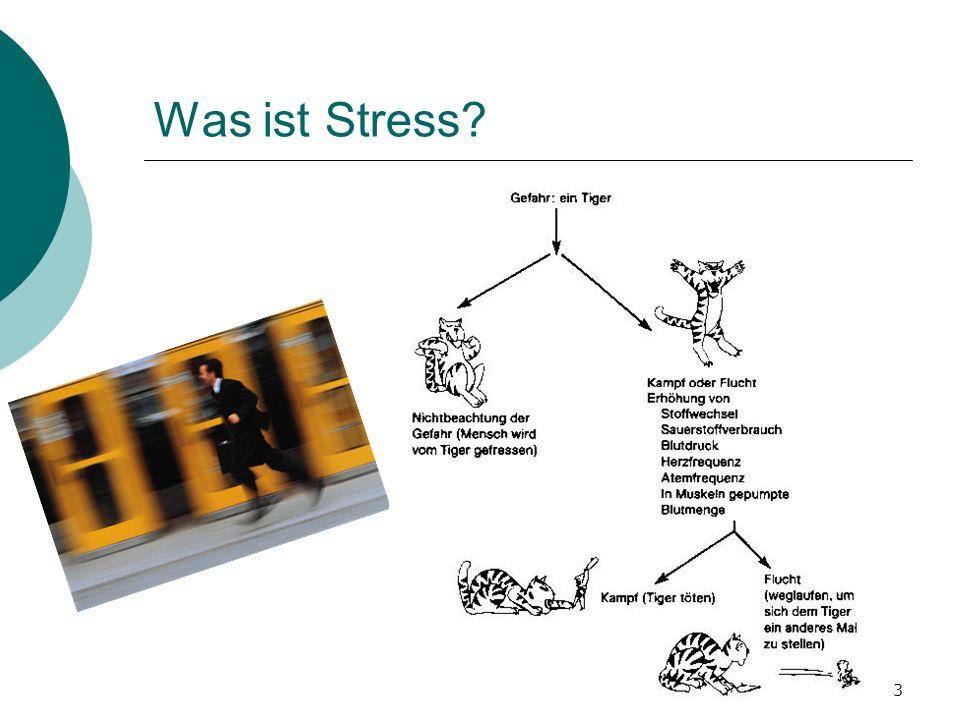 Was ist Stress IFJ-Apéro