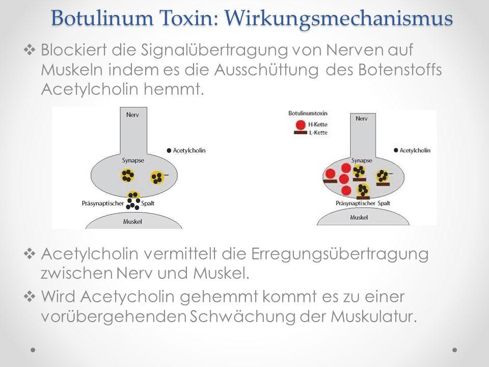 Botulinum Toxin: Wirkungsmechanismus