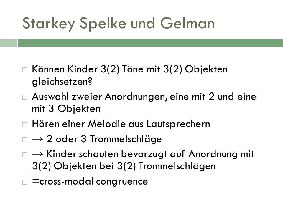 Starkey Spelke und Gelman