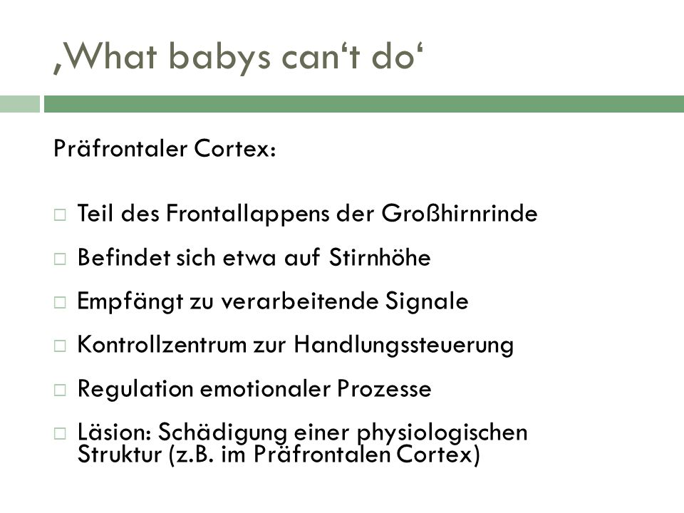'What babys can't do' Präfrontaler Cortex:
