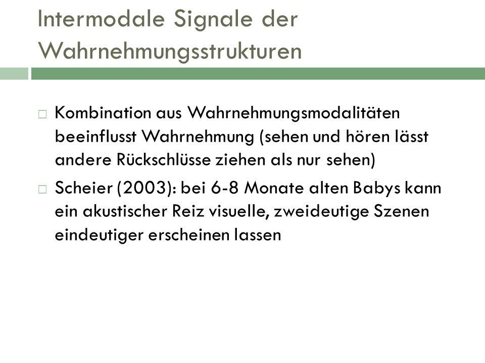 Intermodale Signale der Wahrnehmungsstrukturen