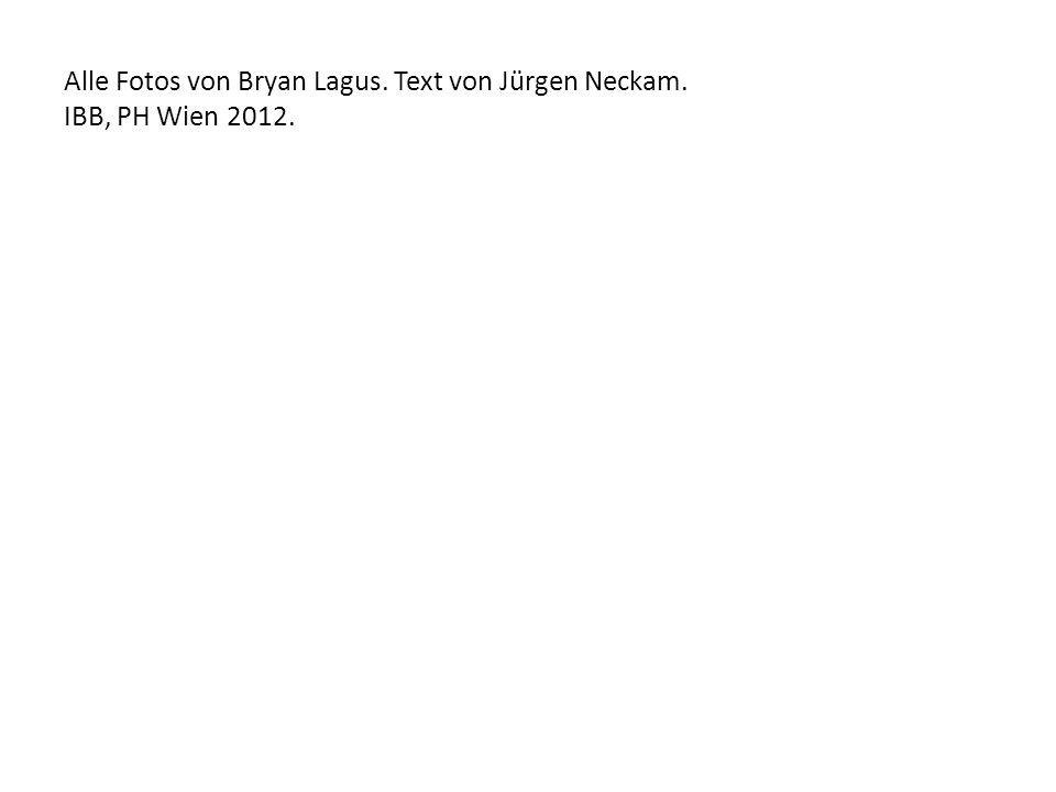 Alle Fotos von Bryan Lagus. Text von Jürgen Neckam. IBB, PH Wien 2012.