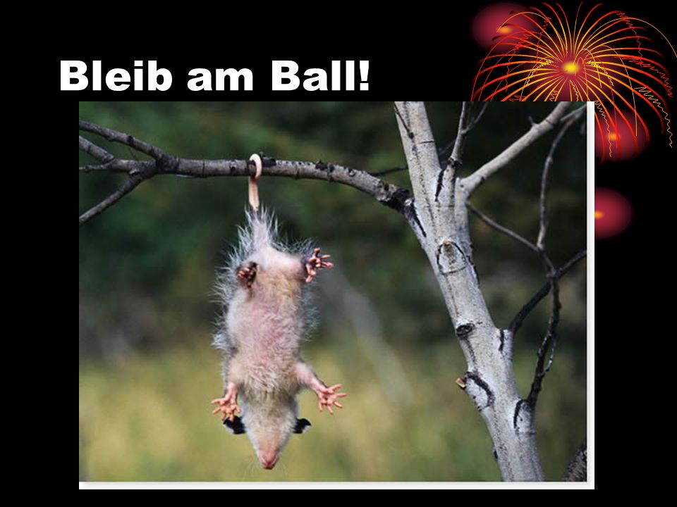 Bleib am Ball!