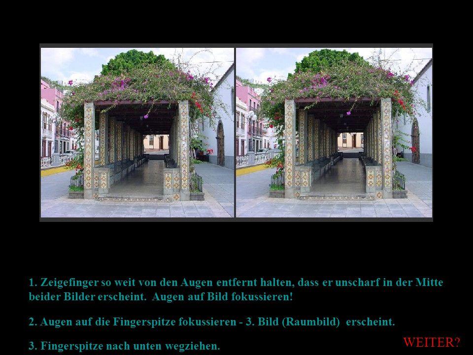 1. Zeigefinger so weit von den Augen entfernt halten, dass er unscharf in der Mitte beider Bilder erscheint. Augen auf Bild fokussieren!
