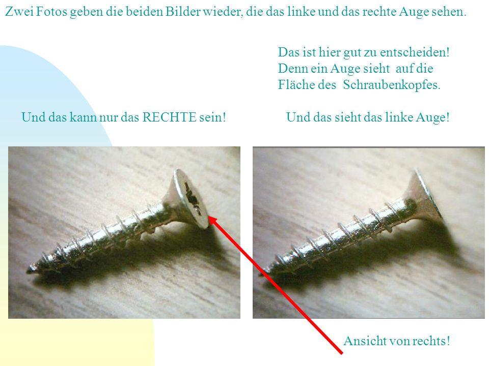 Zwei Fotos geben die beiden Bilder wieder, die das linke und das rechte Auge sehen.
