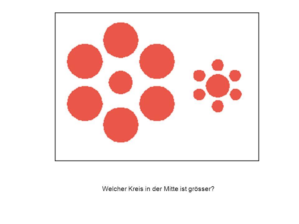 Welcher Kreis in der Mitte ist grösser