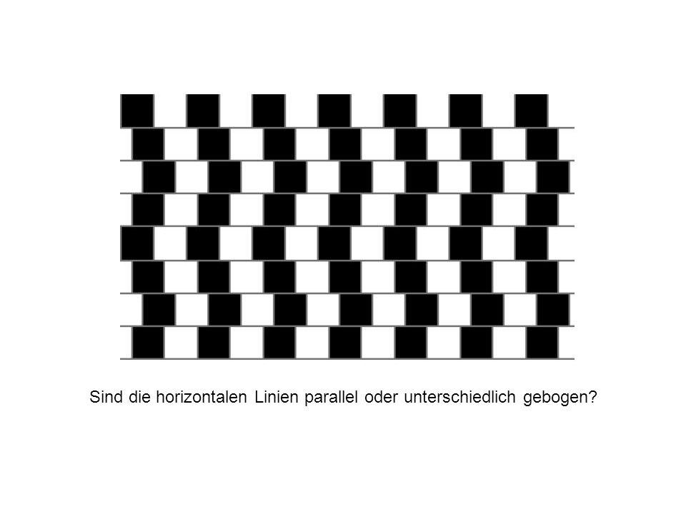 Sind die horizontalen Linien parallel oder unterschiedlich gebogen
