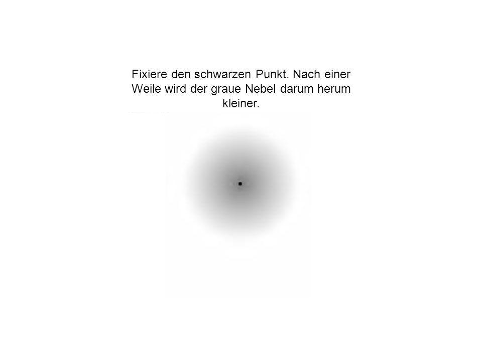 Fixiere den schwarzen Punkt